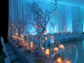 winter-wonderland-wedding-decorations-300x200